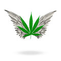 Marijuana leaf high with textured wings Stock Photo