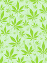 Marijuana leafs background