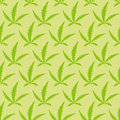 Marijuana leaves seamless pattern vector narcotic background Royalty Free Stock Image