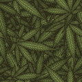 Marijuana leaves seamless vector pattern. Cannabis plant green background.