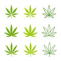 Marijuana leaves vector icons Royalty Free Stock Photo