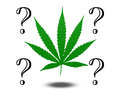 Marijuana questions leaf with question marks Stock Image