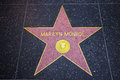 Marilyn Monroe Hollywood Star Royalty Free Stock Photo