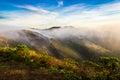 Marin headland in fog golden gate bridge at Royalty Free Stock Images