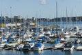 Marina Nynashamn archipelago town Royalty Free Stock Photo
