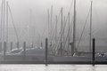 Marinas of oporto one the porto full boats in a misty morning Royalty Free Stock Photo