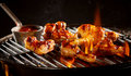 Marinated chicken wings grilling on a barbecue Royalty Free Stock Photo