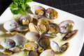 Marinated clams Royalty Free Stock Photo
