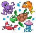 Morský zvieratá