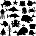 Marine Animals Silhouettes Set