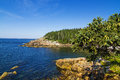 Marine landscape in acadia national park loop road maine Royalty Free Stock Photography