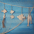 Marine life decoration and on blue shabby background Stock Photography