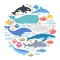 Marine mammals and fishes set in circle. Narwhal, blue whale, dolphin, beluga whale, humpback whale, bowhead and sperm