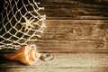 Marine seashell, starfish and fishing net Royalty Free Stock Photo