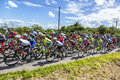 Mark Cavendish inThe Peloton - Tour de France 2016 Royalty Free Stock Photo