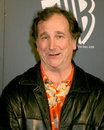 Mark linn baker wb tv tca party pasadena ritz carlton hotel pasadena ca january Royalty Free Stock Photo