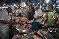 Market in manaus brazil men fishmonger cutting fish a Royalty Free Stock Images