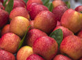 A market stall of apples fresh Stock Images