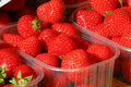 Market Strawberies Royalty Free Stock Photo