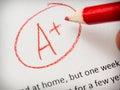 Marking School Paper