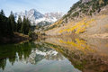 Maroon bells mountains with lake and reflection and green pines and yellow aspens aspen colorado usa Royalty Free Stock Photography