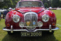 Maroon classic jaguar car polished at show Royalty Free Stock Photo