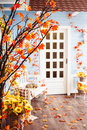 Marple tree with orange leaves on the yard of cozy blue wooden h house selective focus horizontal Royalty Free Stock Photography