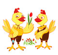 Marriage proposal illustration with chicken Royalty Free Stock Images
