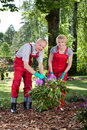 Marriage working in garden happy a vertical Royalty Free Stock Image