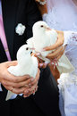 A married couple holding doves in hands. Holiday tradition Stock Photo