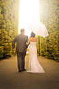 Married couple walking in the park with umbrella Stock Images