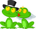 Married frog cartoon kissing Royalty Free Stock Photo
