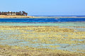 Marsa alam beach in egypt africa Stock Photography