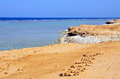 Marsa alam beach in egypt africa Stock Photo