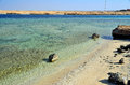 Marsa alam beach in egypt africa Royalty Free Stock Photos