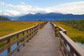 Marsh Boardwalk Royalty Free Stock Photos
