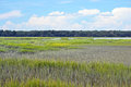 Marsh landscape a pretty in hilton head south carolina Stock Photography