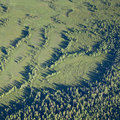 Marsh in summer top view aerial the swampy plain warm evening Royalty Free Stock Image