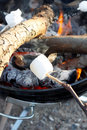 Marshmallow Royalty Free Stock Photo