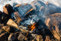 Marshmallow on the fire Royalty Free Stock Photo