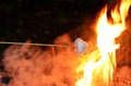 Marshmallow roast on camp fire Royalty Free Stock Photo