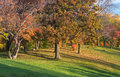 Marthaler Park Autumn Trees On...