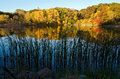 Marthaler Pond Autumn Reflections Royalty Free Stock Photo