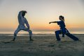 Martial arts athletes Royalty Free Stock Photo
