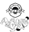 Martial arts judo Royalty Free Stock Images