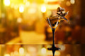 Martini green olives and orchid flower on mirror table in bar Royalty Free Stock Image