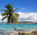 Martinique Royalty Free Stock Photo