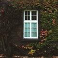 Marvellous window Royalty Free Stock Photo