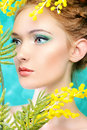 Marvelous portrait of a beautiful girl with mimosa flowers spring Royalty Free Stock Photo