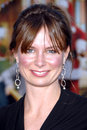 Mary Lynn Rajskub Royalty Free Stock Photos